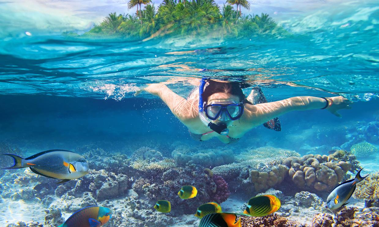 Snorkel away