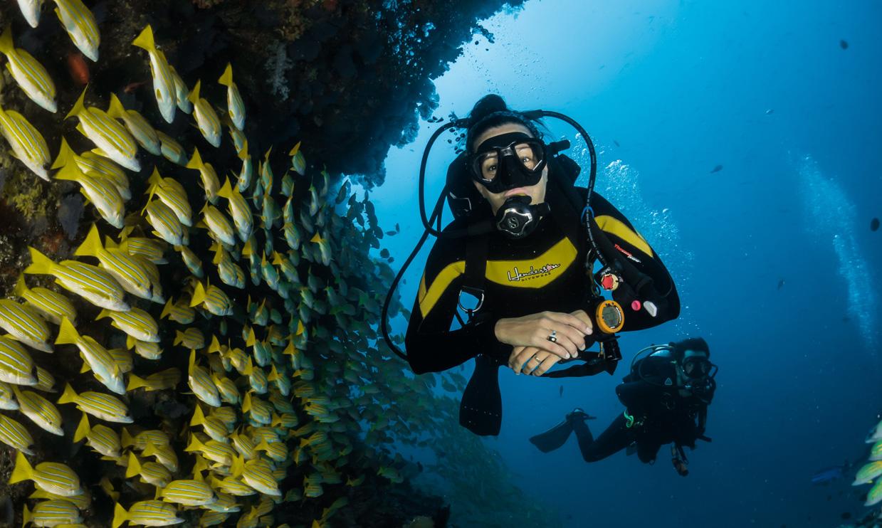 Take a deep dive