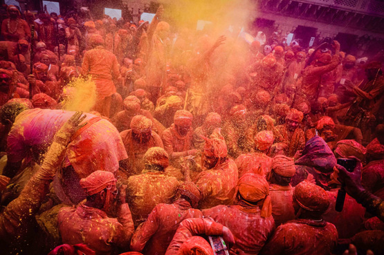 Celebrate the Colours of Life