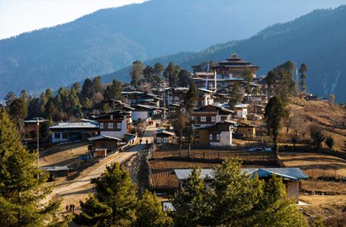 Punakha - Gangtey (Phobjikha)