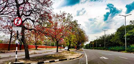 Dharamsala - Taragarh - Chandigarh