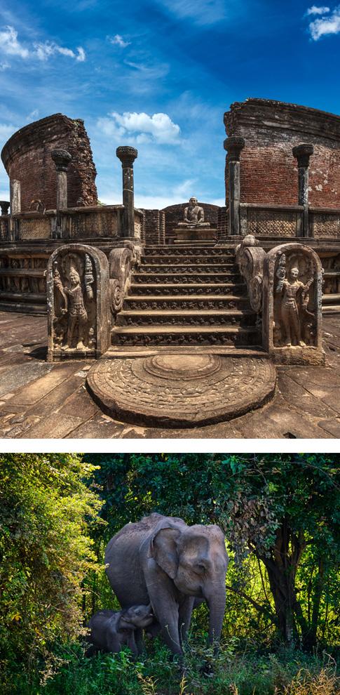 Sigiriya - Polonnaruwa - Minneriya - Sigiriya